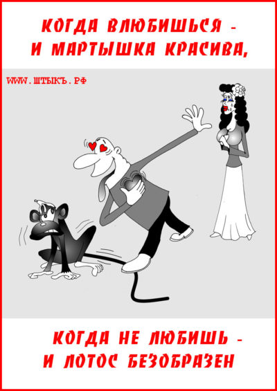 Веселая пословица в карикатурах про любовь