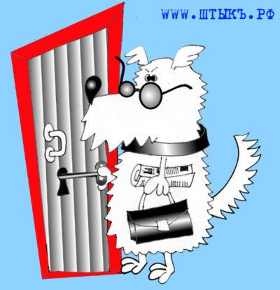 Свежие анекдоты, лучший юмор в картинках: Собака с ключом