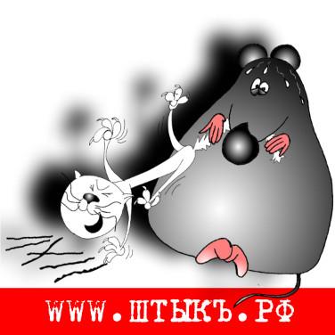 Прикольная пословица про кота и мышь