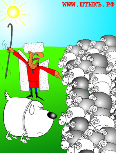 Карикатура на баранов-чиновников