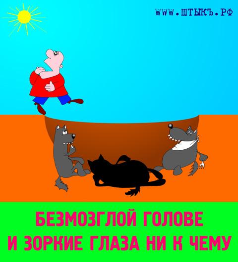 Лучшие смешные поговорки, пословицы, афоризмы с карикатурами про дураков