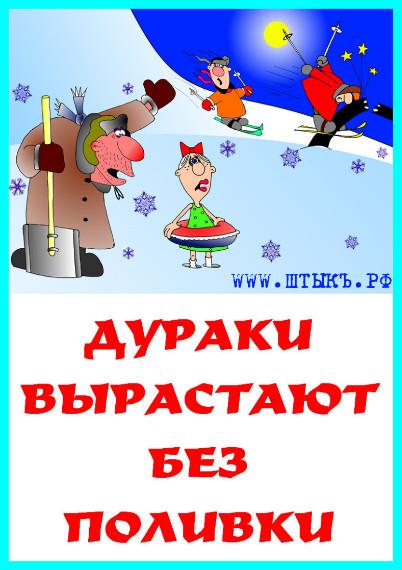 Пословицы, поговорки, цитаты с веселыми картинками про воспитание детишек