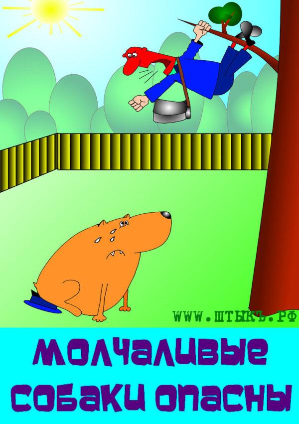 weselye-pogoworki-prikoly-dogs