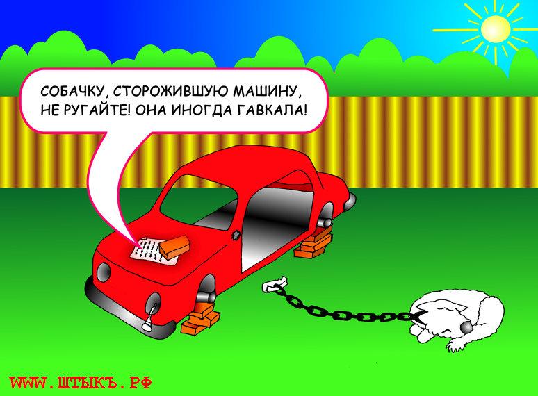 Собака сторожит машину