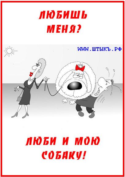 Смешные пословицы в карикатурах