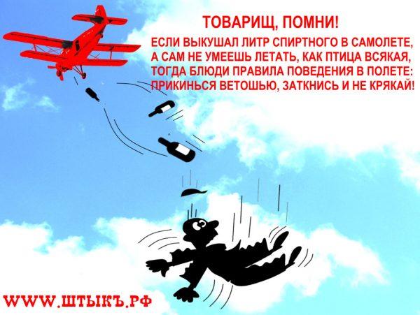 Карикатура плакат на дебошира в самолете