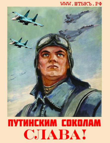 Плакат про соколов Путина