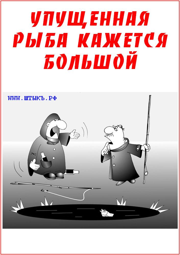 Афоризмы, пословицы, шутки с рисунками про рыбалку