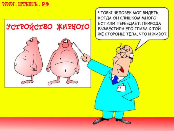 Анекдоты, шутки, карикатуры, веселые советы с картинками: Устройство жирного