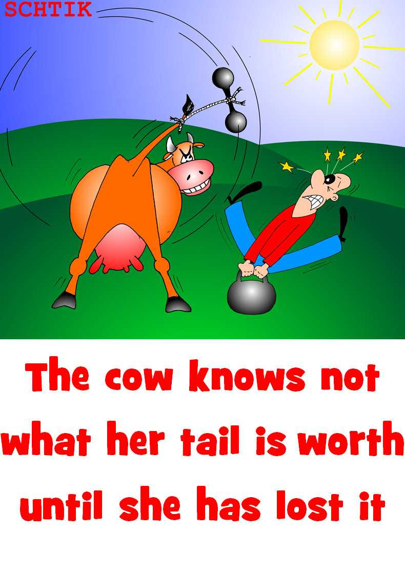 The cow knows not what her tail is worth until she has lost it