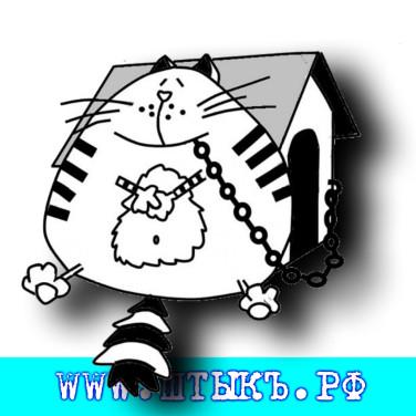 Короткий анекдот с карикатурой про кота