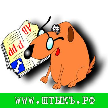 Анекдоты, поговорки, приколы с картинками про собак