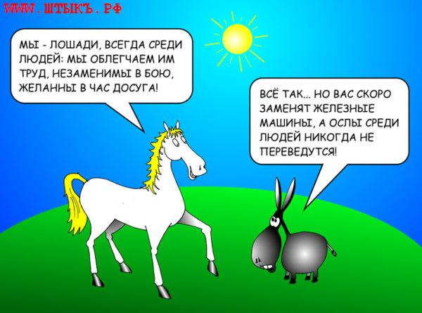Остроумные анекдоты, юмор, приколы, картинки про животных: Осел и лошадь