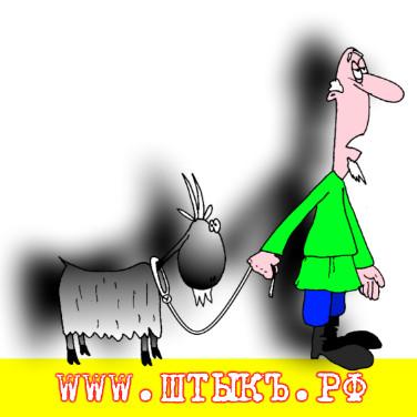 Анекдоты, картинки, поговорки, юмор: Врач-не ветеринар