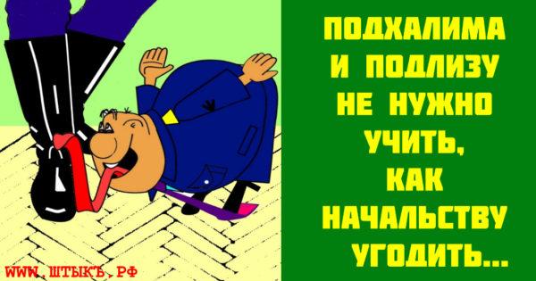 Веселая пословица с карикатурой про лизоблюдов и подлиз