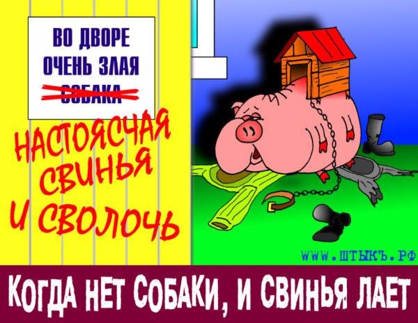 Когда нет собаки, и свинья лает