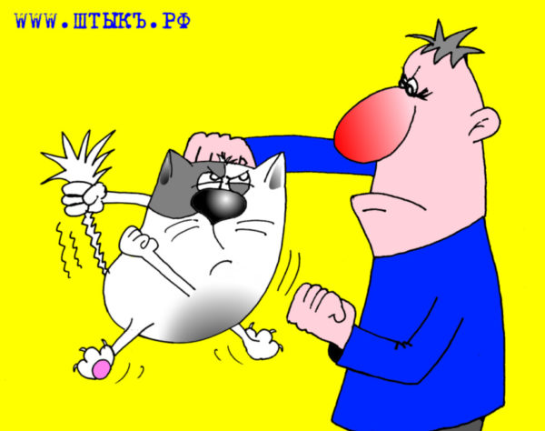 Смешная карикатура про мужика и кота