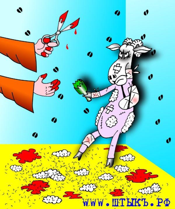 Басни Эзопа: Стриженая овца