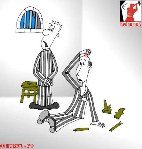 Карикатура: В камере все лысые - равны...
