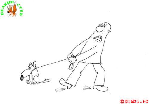 Анекдот про странную собачку. Карикатура