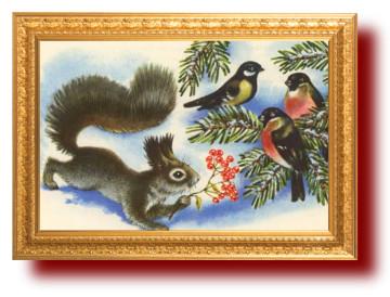 Советские открытки. Белка. Миниатюра